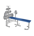 gym tools vector image vector image