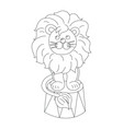 lion sitting in a circus arena outline vector image vector image