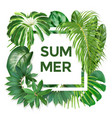 summer typography with exotic leaves vector image