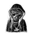 cat rapper dressed in hoodie necklace with vector image