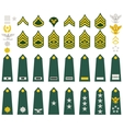 Insignia of the US Army vector image vector image