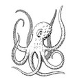 octopus ink hand drawn vintage vector image vector image