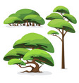 set cartoon stylized tree and bush vector image vector image