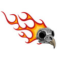 cartoon a bird skull with flames vector image