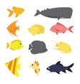 Fish icon set exotic sea creature color
