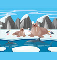 sea lions and shark in the north pole vector image
