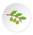 Sprig of olive icon cartoon style vector image vector image