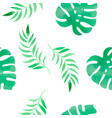 tropical monstera floral color watercolor vector image vector image