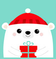 white polar bear head face holding gift box red