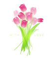 Fresh spring tulips vector image