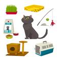 Cat object set items and stuff cartoon vector image