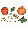 christmas set fruits vector image vector image
