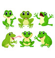 collection of the pretty green frogs vector image vector image