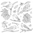 hand drawn set of birds branches leaves vector image