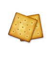 realistic 3d square delicious salty cookies vector image vector image