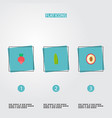 set of fruit icons flat style symbols with lychee vector image vector image