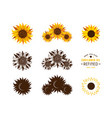 set stylized sunflowers vector image