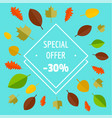 special offer autumn sale limited background flat vector image vector image