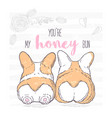 two cute hand drawn dogs lie next to each other vector image