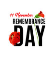 11 of november remembrance day vector image