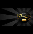black friday sale horizontal banner with black vector image