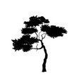 black silhouette african tree isolated image