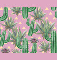 cactus pattern texture modern pink vector image vector image