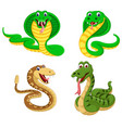 collection of the big snakes vector image