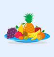 different fruits in a blue plate vector image vector image