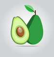 green avocado fruit on a white space with shadows vector image