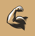 muscular arm with clenched fist bodybuilding gym vector image vector image