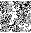 Seamless grapes background black and white vector image vector image