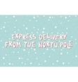 Xmas card with an inscription Express Delivery vector image vector image