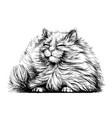cat wall sticker black and white graphic vector image vector image