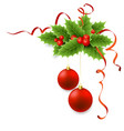 Christmas holly with berries vector image vector image