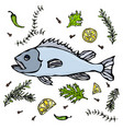 fresh fish with herbs spices and lemon vector image