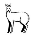 hand drawn musk deer sketch on white vector image vector image