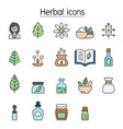 herbal color line icon set vector image