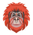 orangutan head logo monkey decorative vector image vector image