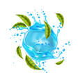 realistic blue water splash mint leaves vector image vector image