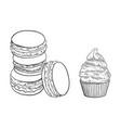 Sketch matcha flavor macaroni cupcake