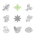 spices linear icons set vector image