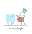stomatologist with apple standing near a large vector image vector image