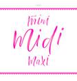 words mini midi maxi for clothes vector image