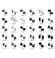 animals footprints animal feet silhouette frog vector image