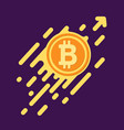 bitcoin symbol in flat design for internet money vector image vector image