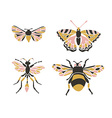 Bumblebee butterfly mol apanteles Insect icons set vector image