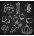 Chalk sketches of fresh vegetables vector image vector image