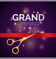 grand opening template - modern vector image