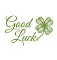 green lucky clover vector image vector image